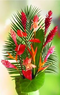 Bouquet de fleur tropicale & feuillage (20 tiges)